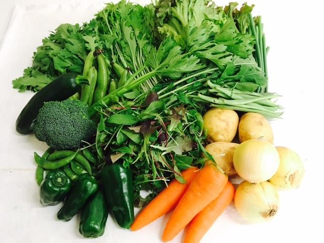 むらおか自慢の安心・安全 15品目の有機野菜セット