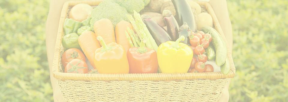 むらおかのオーガニック野菜