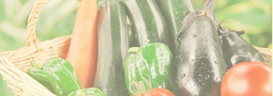 九州の野菜